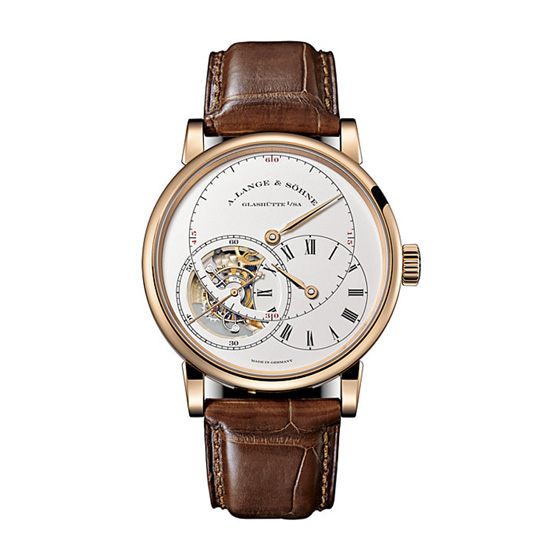 A. Lange & Sohne Richard Lange Perpetual Calendar Terraluna 45.5mm Mens Watch 180.032 Replica